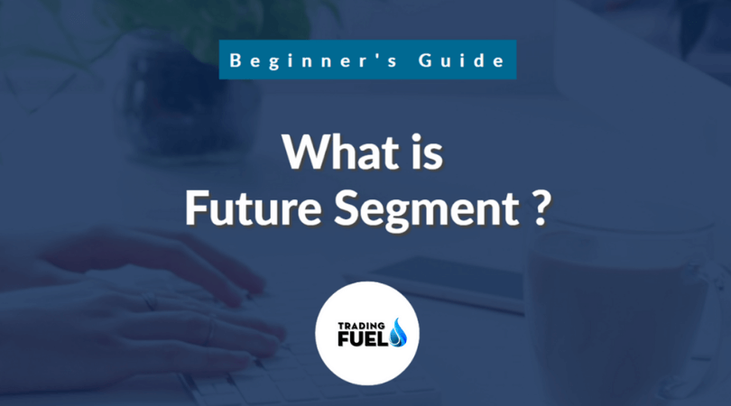 what is Future Segment