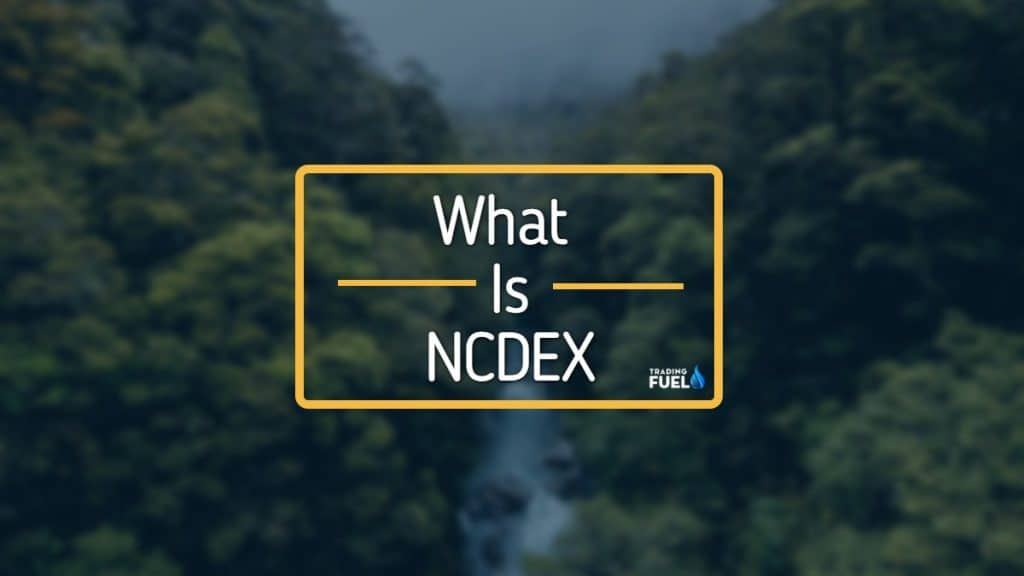 What is NCDEX in India