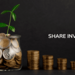 About Share Investment